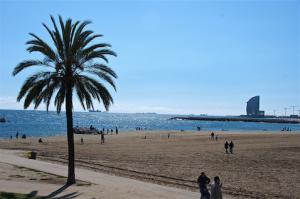 playa de barcelona