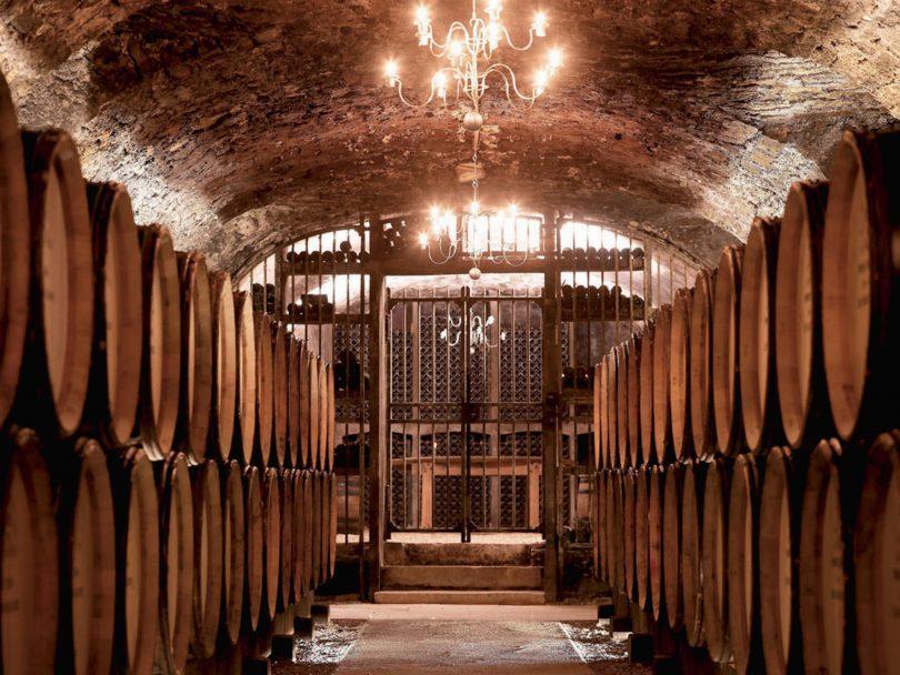 Dégustation et tours de vins et cava en Barcelone