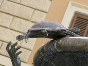 TortueSculpture