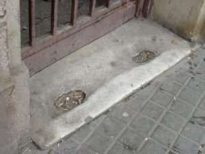 traces prostituées la rambla barcelona