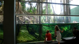 cosmocaixa-museum-planetarium-science