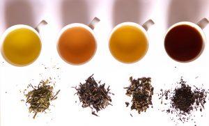 Herboriste et thé