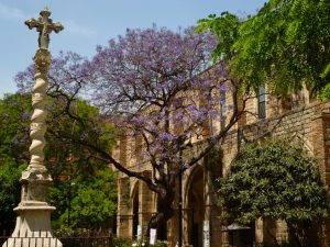 Jardins de Rubio y Lluch