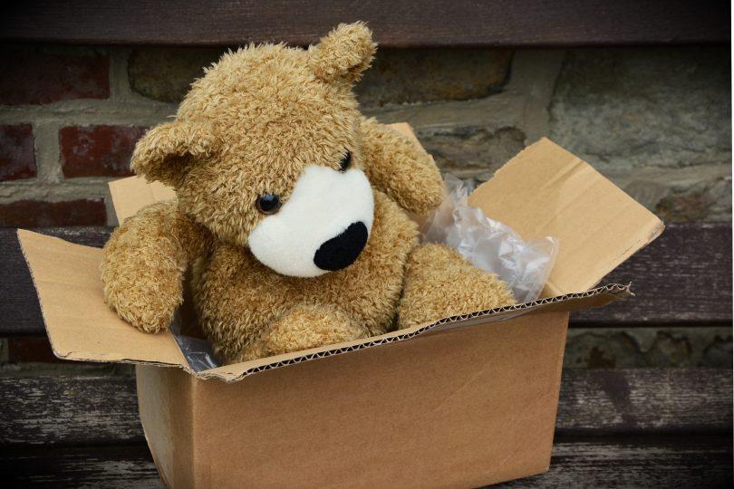 ours en peluche dans une boîte en carton