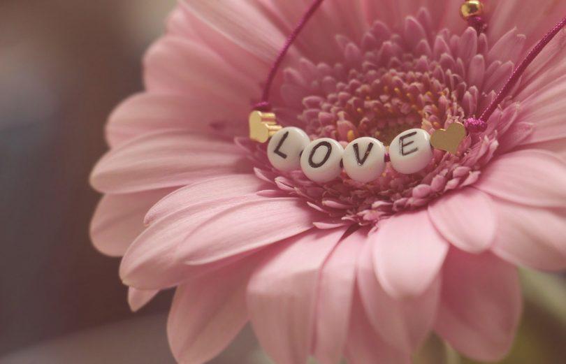 fleur rose avec love écrit dessus