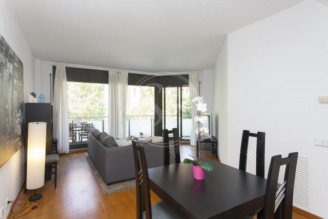 salon et salle à manger appartement